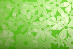 Transluscent flowers on green royalty free stock photos