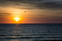 Transmarin soluppgång Arkivbilder