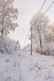 Transmisión de energía eléctrica en madera del invierno Fotos de archivo