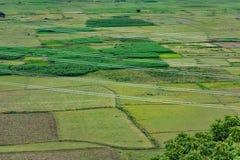 a transmissão elétrica cruza o campo de almofada das hortaliças que olha impressionante na terra dividida imagens de stock royalty free
