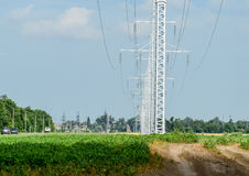 Transmission tower on a background field of soybeans.  royalty free stock photo