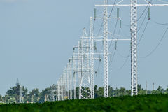 Transmission tower on a background field of soybeans Stock Image