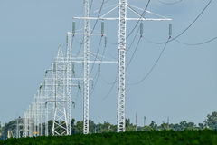 Transmission tower on a background field of soybeans.  royalty free stock photography