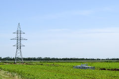 Transmission tower on a background field of soybeans.  royalty free stock images