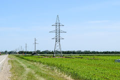 Transmission tower on a background field of soybeans.  royalty free stock image