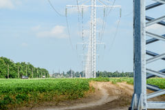 Transmission tower on a background field of soybeans.  stock photography