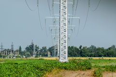Transmission tower on a background field of soybeans.  stock images