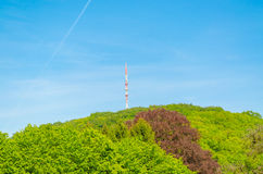 Transmission Tower. Broadcasting tower on a wooded hillside against blue sky Royalty Free Stock Images