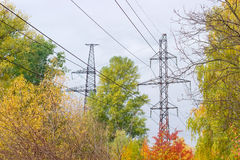 Transmission towers of overhead power lines against autumn folia Stock Image