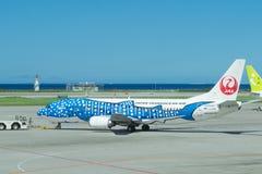 Transocean飞机在冲绳岛 库存图片