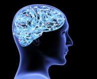 Transparant 3d hoofd van de man en de hersenen Royalty-vrije Illustratie