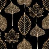 Transparant gouden de herfst naadloos patroon van skeletbladeren stock illustratie