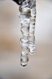 Transparant ontruim twee ijskegels hangen Royalty-vrije Stock Foto