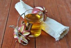 Transparante appelen die in glas vallen Stock Foto