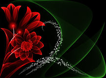 Transparante bloemen Royalty-vrije Stock Fotografie