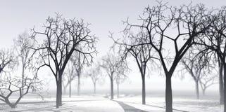 Transparante de winterlucht stock illustratie