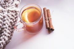 Transparante kop met hete kruidige drank, citroen en sinaasappel Stock Fotografie