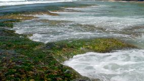Transparante oceaangolvenstroom neer van bruine langzame rotsen stock video