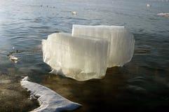 Transparante stukken van ijs Stock Foto's