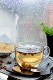 Transparante theekop tegen venster met regenachtige dagmening Royalty-vrije Stock Afbeeldingen