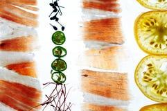 Transparency food pata negra iberico ham serano tomato chili pepper saffron. Topdown view Transparency food pata negra iberico ham serano tomato chili pepper Stock Photos