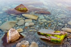 Transparency sea water. With stones Stock Image
