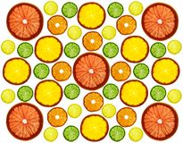Transparency sliced colorful fruits on white background. Rings of grapefruit, lemon, tangerine and orange. Pattern Stock Photography