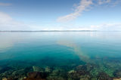 Transparent Adriatic Sea. Beautiful Adriatic coast near Zadar, Croatia Stock Photos