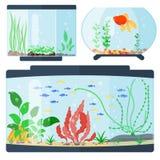 Transparent Aquarium Vector Illustration Habitat Water Tank House Underwater Fish Tank Bowl. Royalty Free Stock Photography