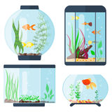 Transparent aquarium vector illustration habitat water tank house underwater fish tank bowl. Stock Images