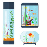 Transparent aquarium vector illustration habitat water tank house underwater fish tank bowl. Royalty Free Stock Photo