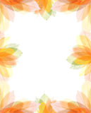 Transparent autumn leaves frame. Transparent colorful summer flowers frame isolated on white Stock Photography