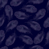 A transparent background from feathers without seam. Vector illu Royalty Free Stock Photography