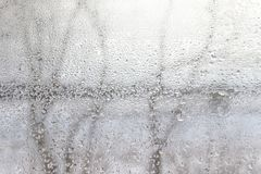 Transparent background of water drops on window surface. With trees behind at winter season Royalty Free Stock Photography