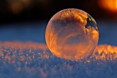 Transparent ball reflecting frost Stock Images