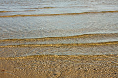 Transparent Baltic sea. Royalty Free Stock Image