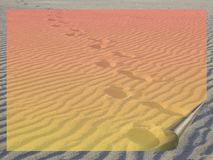 Transparent banner. Transparent gradient banner over the beach Stock Photography