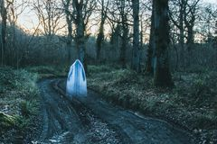 A transparent blurred ghostly hooded figure standing on a path in a forest in winter. With a grainy muted edit.  stock image