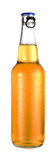 Transparent bottle of beer with drops. On white background Stock Image