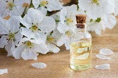 A bottle of essential oil with white blossoms Royalty Free Stock Photos