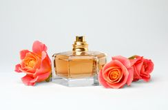 Transparent bottle of perfume with beautiful roses. On white background Stock Photos