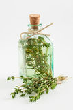 Transparent bottle of thyme essential oil or infusion Royalty Free Stock Image