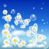 Transparent butterflies and daisy Stock Photo