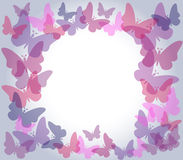 Transparent butterflies frame. Beautiful nature frame with colorful transparent butterflies in shades of pink and purple over light gradient grey background Stock Photos