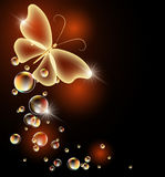 Transparent butterfly and bubbles Stock Images