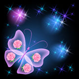 Transparent butterfly and stars Stock Image