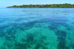 Transparent and calm waters. In the Caribbean sea with Solarte island in background, Bocas del toro, Panama stock photo