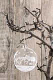 Transparent Christmas ball hanging against wooden board Stock Photography