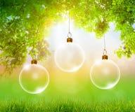 Transparent Christmas ball Stock Photos