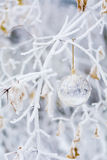 Transparent christmas ball with snowflakes Stock Photos